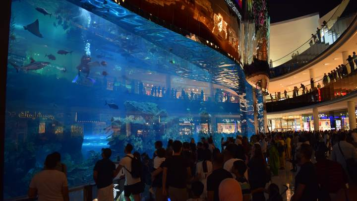 Dubai Aquarium in de Dubai Mall
